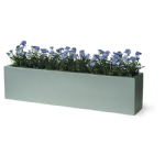 Small troughs (Window Boxes)